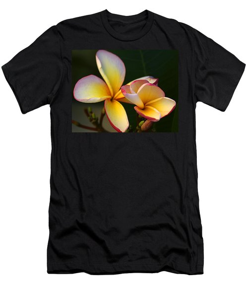 Frangipani Flowers Men's T-Shirt (Athletic Fit)