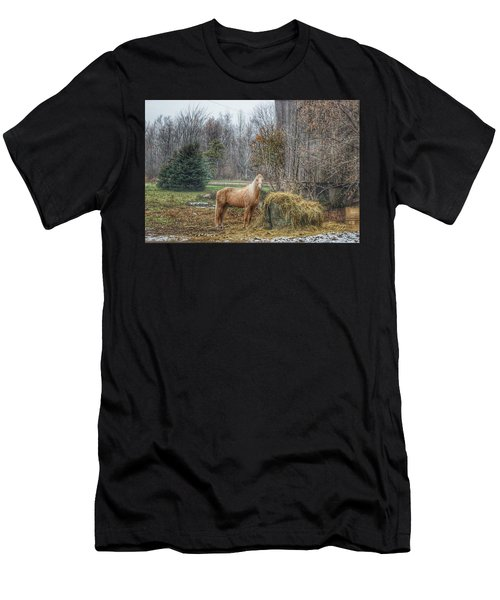 1016 - Frenchline Road Carmel Mare I Men's T-Shirt (Athletic Fit)