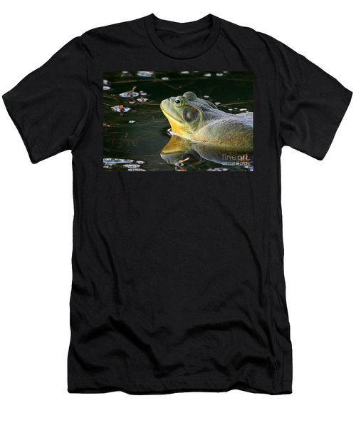 Frog At Sunset Men's T-Shirt (Slim Fit) by Paula Guttilla