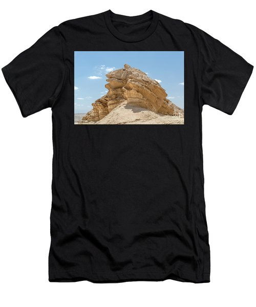 Frog Rock Men's T-Shirt (Athletic Fit)