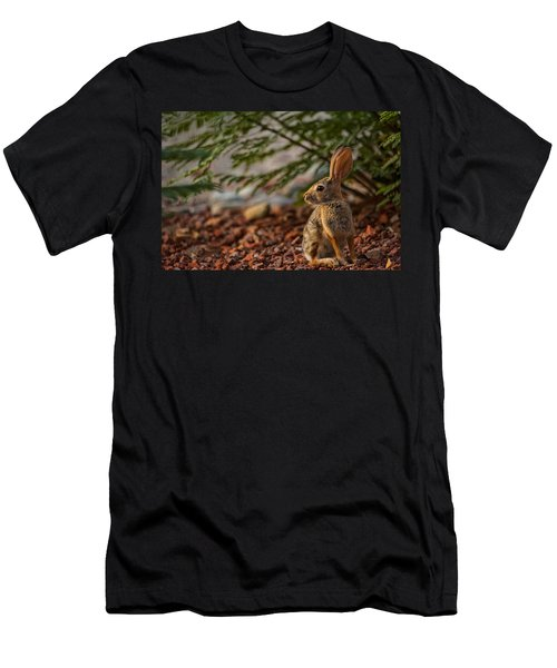 Men's T-Shirt (Athletic Fit) featuring the photograph Frontyard Bunny by Dan McManus