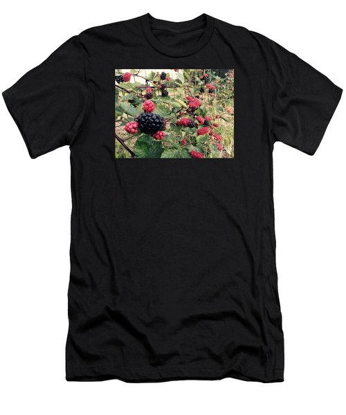 Fruit Of The Vine Men's T-Shirt (Athletic Fit)