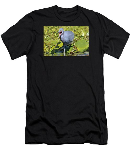 Fussy Little Blue Heron Men's T-Shirt (Athletic Fit)