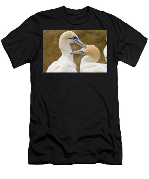 Gannet Pair 1 Men's T-Shirt (Athletic Fit)