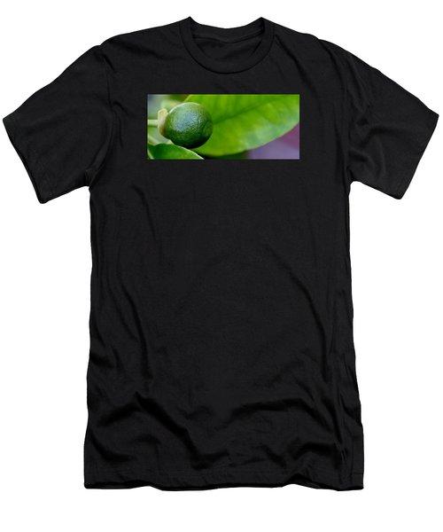 Gapefruit Men's T-Shirt (Athletic Fit)