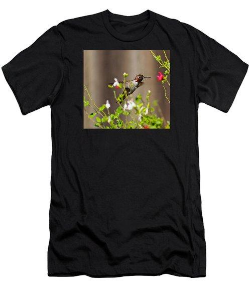 Garden Hummingbird Men's T-Shirt (Athletic Fit)