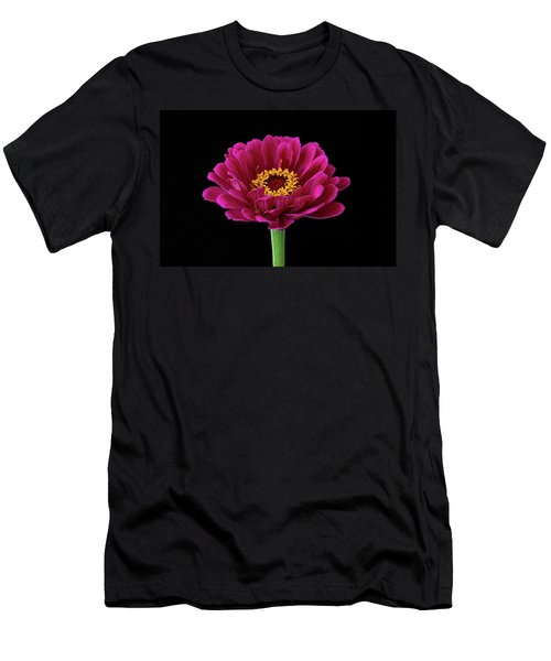 Garden Zinnia Men's T-Shirt (Athletic Fit)