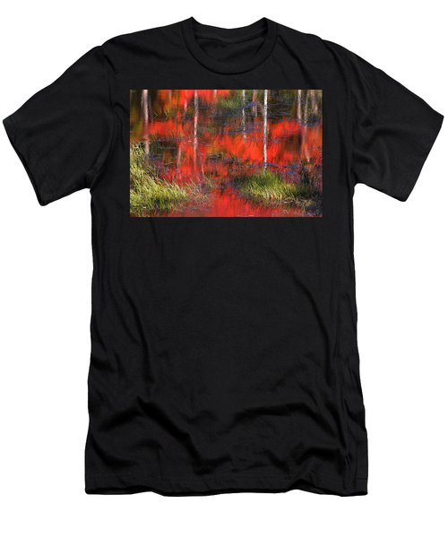 Gatineau Marsh Fall Colors Men's T-Shirt (Athletic Fit)