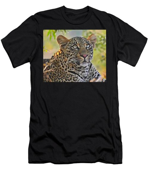 Gazing Leopard Men's T-Shirt (Athletic Fit)