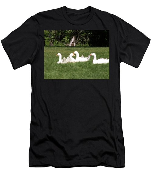 Geese In The Grass Men's T-Shirt (Athletic Fit)