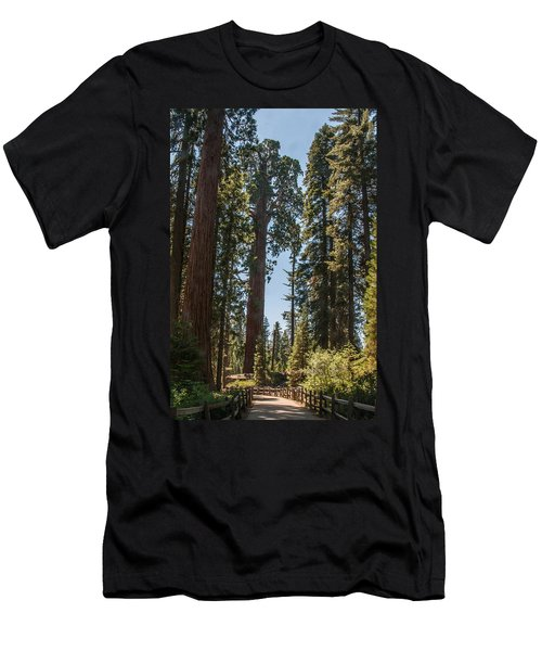 General Grant Tree Kings Canyon National Park Men's T-Shirt (Athletic Fit)