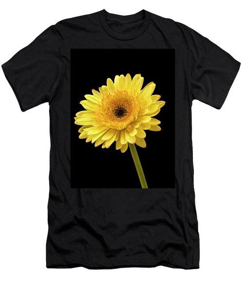 Gerbera Portrait Men's T-Shirt (Athletic Fit)