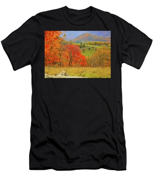 Germany Valley Dressed In Autumn Men's T-Shirt (Athletic Fit)