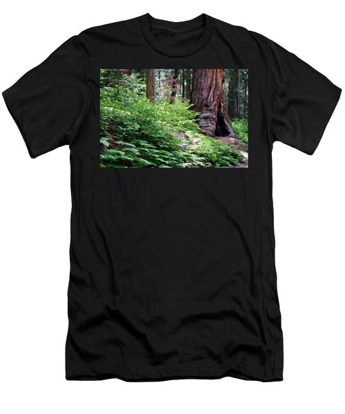 Giant Among The Forest Men's T-Shirt (Slim Fit) by Lana Trussell