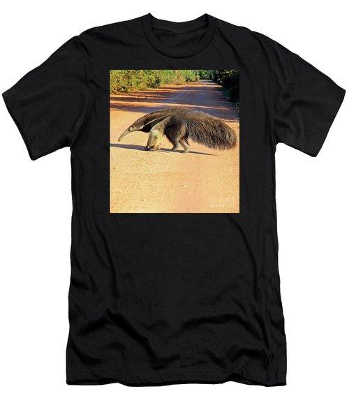 Giant Anteater Crosses The Transpantaneira Highway In Brazil Men's T-Shirt (Athletic Fit)
