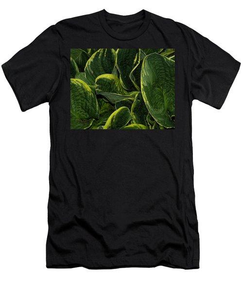 Giant Hosta Closeup Men's T-Shirt (Athletic Fit)