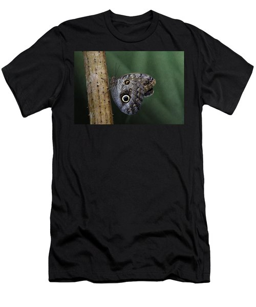 Giant Owl Butterfly On Screw Pine Men's T-Shirt (Athletic Fit)