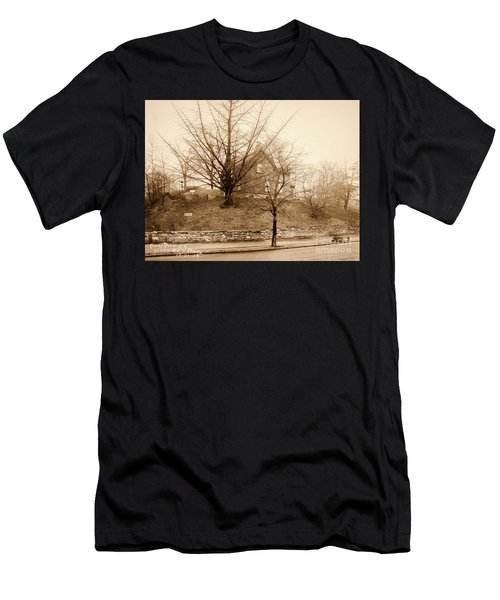 Ginkgo Tree, 1925 Men's T-Shirt (Athletic Fit)