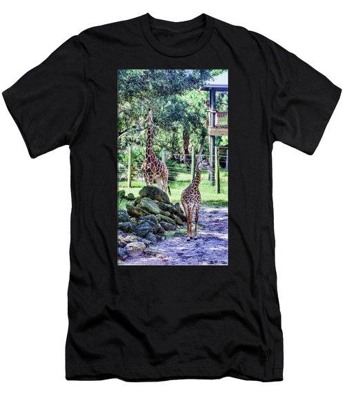Giraffe Art I Men's T-Shirt (Athletic Fit)