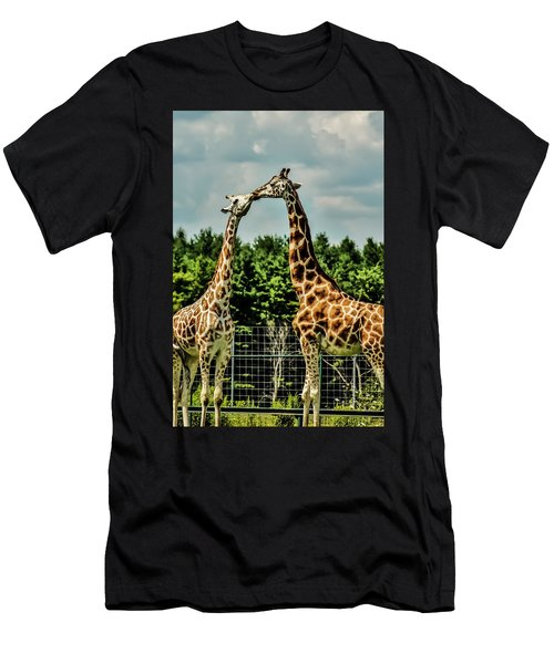 Giraffes Necking Men's T-Shirt (Athletic Fit)