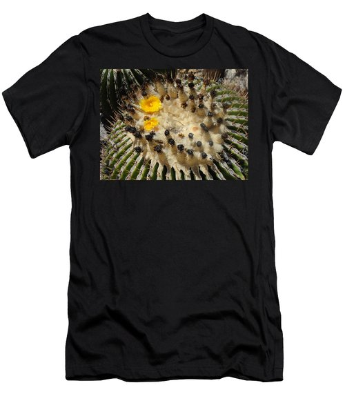 Giving Birth Barrel Cactus Yellow Flowers Men's T-Shirt (Athletic Fit)