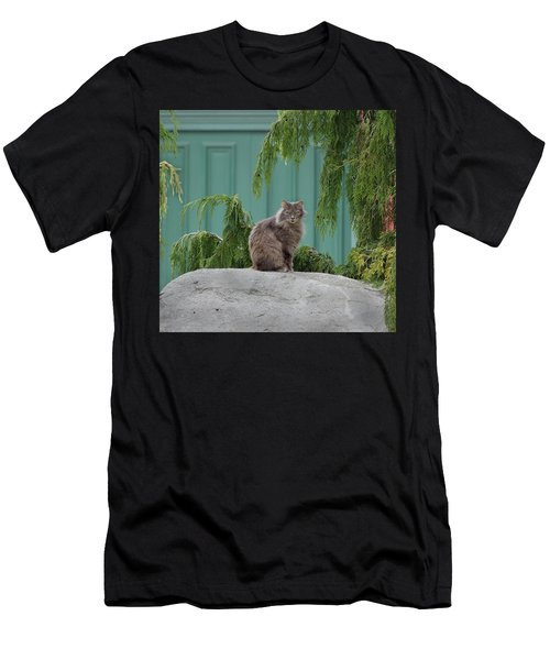 Glorious Cat Men's T-Shirt (Athletic Fit)