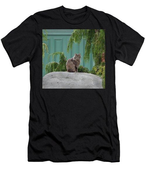 Glorious Cat Men's T-Shirt (Athletic Fit)