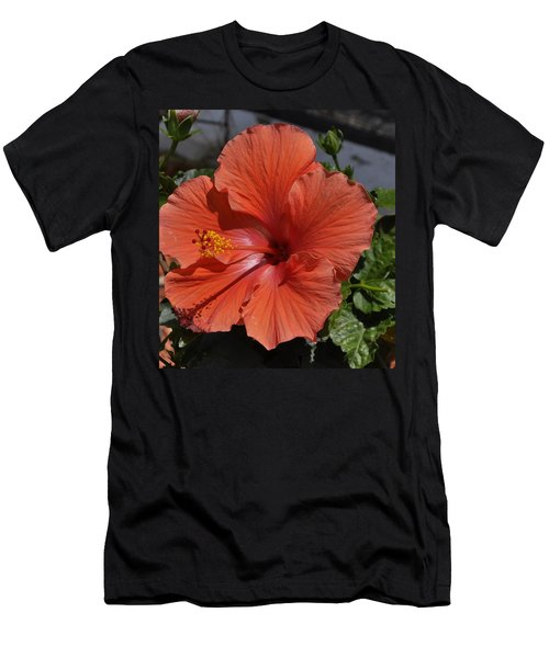 Glorious Hibiscus Men's T-Shirt (Athletic Fit)