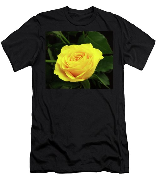 Glorious Yellow Rose Men's T-Shirt (Athletic Fit)