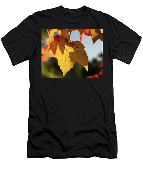 Glowing Leaves Men's T-Shirt (Athletic Fit)