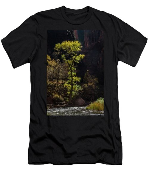 Glowing Tree At Zion Men's T-Shirt (Athletic Fit)