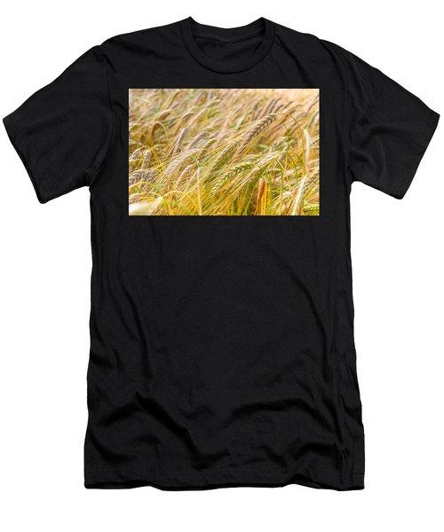 Golden Barley. Men's T-Shirt (Athletic Fit)