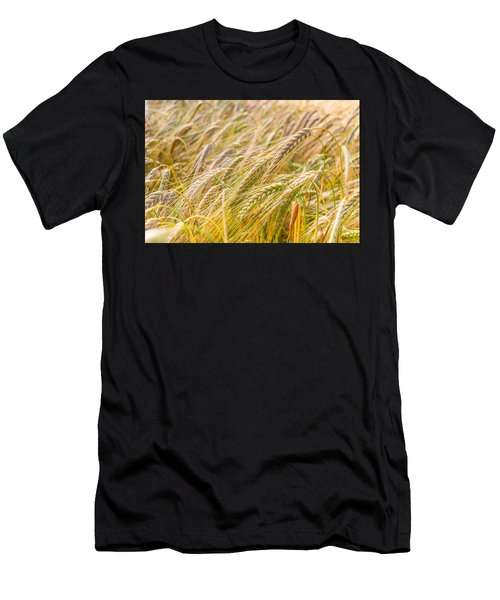 Golden Barley. Men's T-Shirt (Athletic Fit)