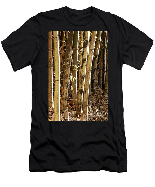 Men's T-Shirt (Athletic Fit) featuring the photograph Golden Canes by Linda Lees