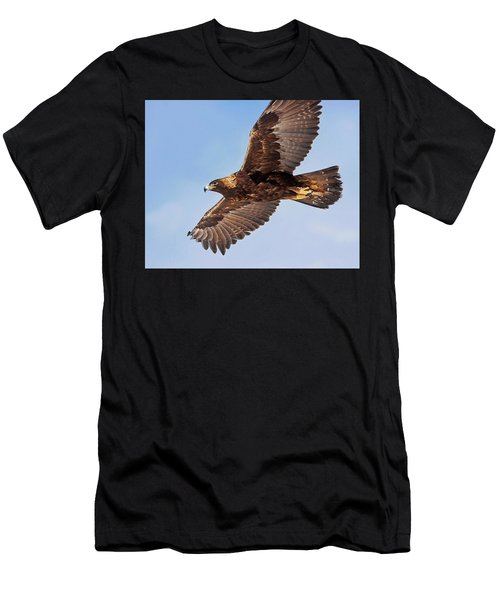 Golden Eagle Flight Men's T-Shirt (Athletic Fit)