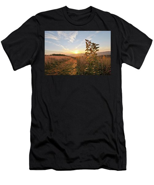 Golden Landscape Men's T-Shirt (Athletic Fit)