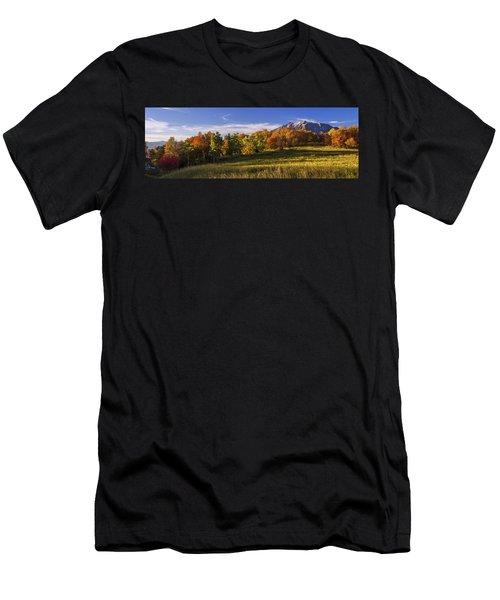 Golden Meadow Men's T-Shirt (Athletic Fit)