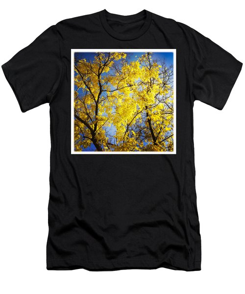 Golden October Tree In Fall Men's T-Shirt (Athletic Fit)