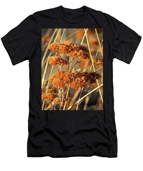 Golden Reach Men's T-Shirt (Athletic Fit)