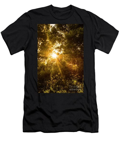 Golden Treetops Men's T-Shirt (Athletic Fit)