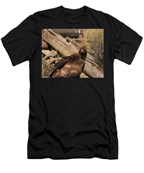 Goldeneagle1 Men's T-Shirt (Athletic Fit)