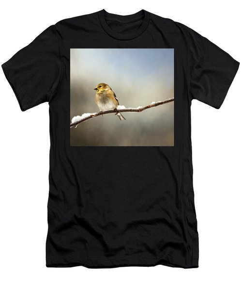Goldfinch After A Spring Snow Storm Men's T-Shirt (Athletic Fit)