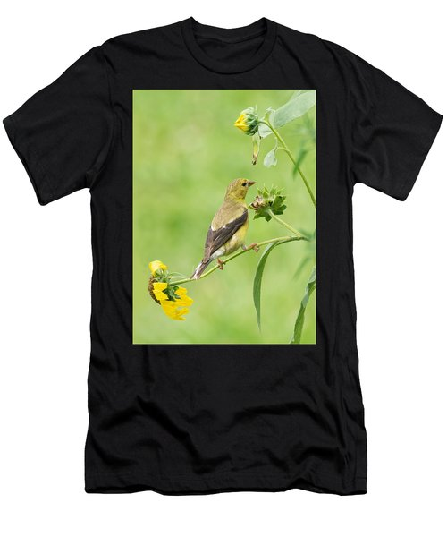 Goldfinch Snackbar Men's T-Shirt (Athletic Fit)