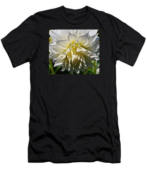 Graceful Dahlia  Men's T-Shirt (Athletic Fit)