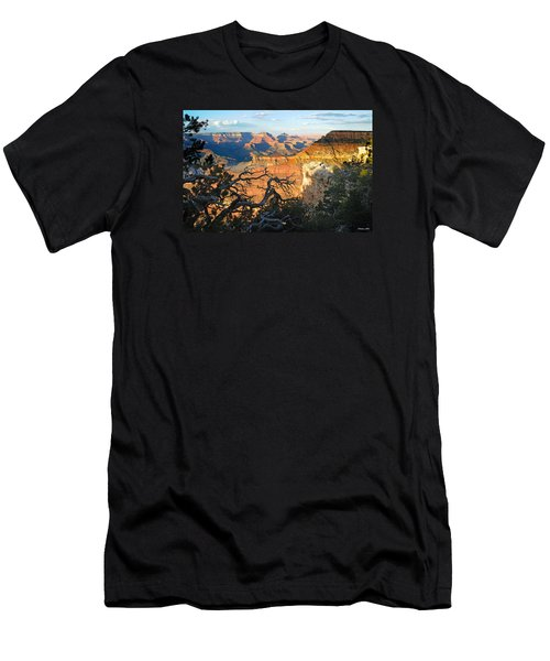 Grand Canyon South Rim - Sunset Through Trees Men's T-Shirt (Athletic Fit)