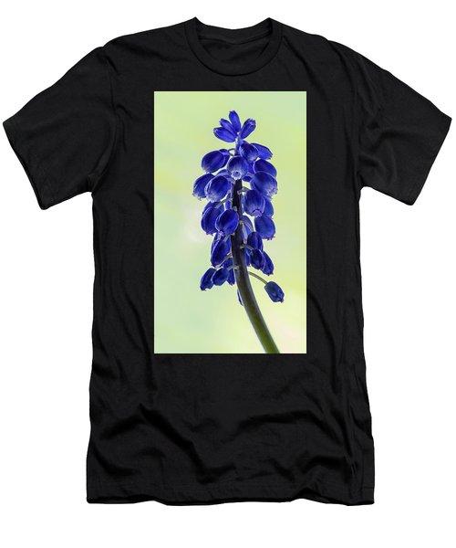 Grape Hyacinth Men's T-Shirt (Athletic Fit)