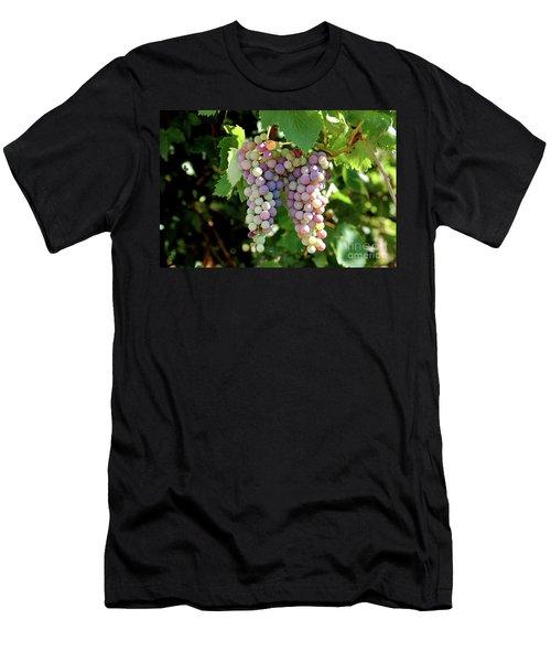 Grapes In Color  Men's T-Shirt (Athletic Fit)