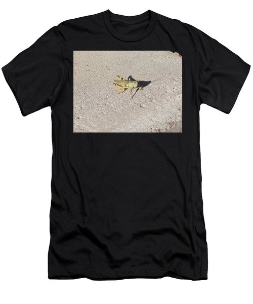 Grasshopper Curiosity Men's T-Shirt (Athletic Fit)