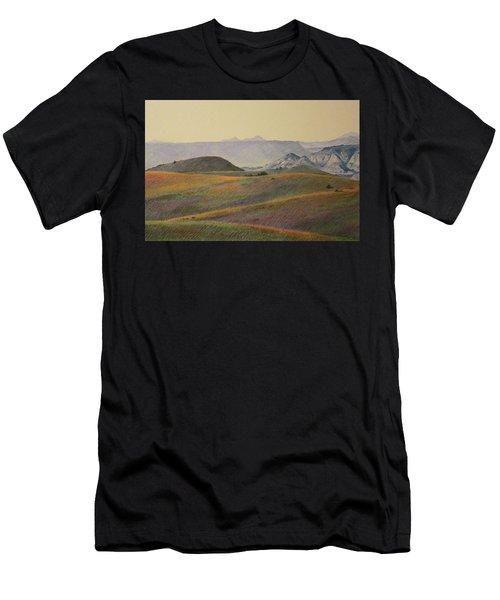 Grasslands Badlands Panel 2 Men's T-Shirt (Athletic Fit)