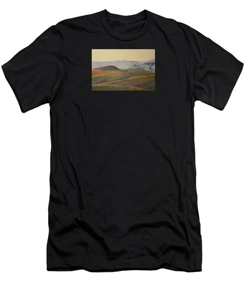 Grasslands Badlands Panel 2 Men's T-Shirt (Athletic Fit)